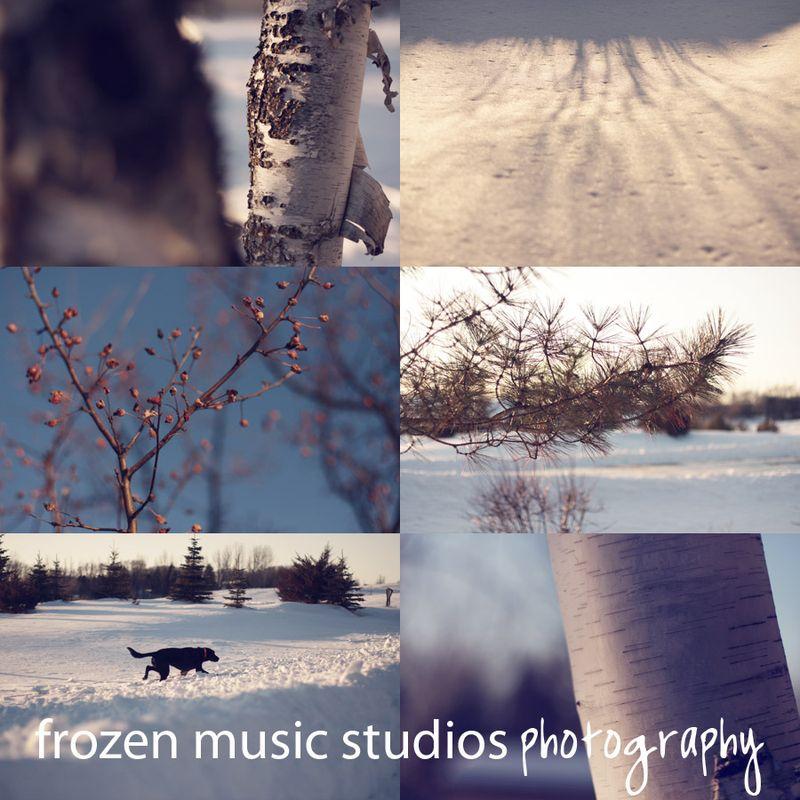 Frozenmusicstudioswinter1